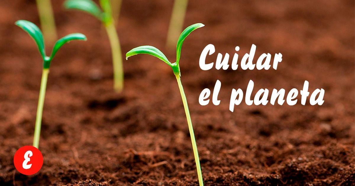 Cuidar-planeta