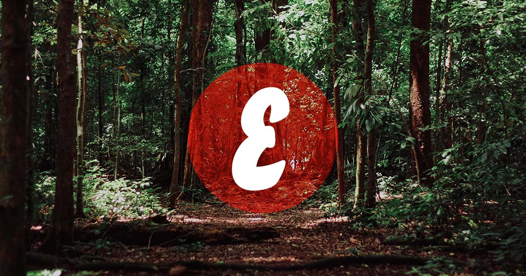 Naturaleza-blog-Euronava